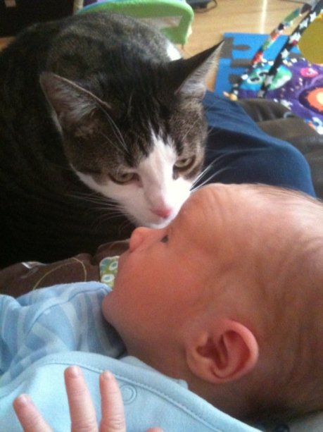 Lili checking out a newborn Jack